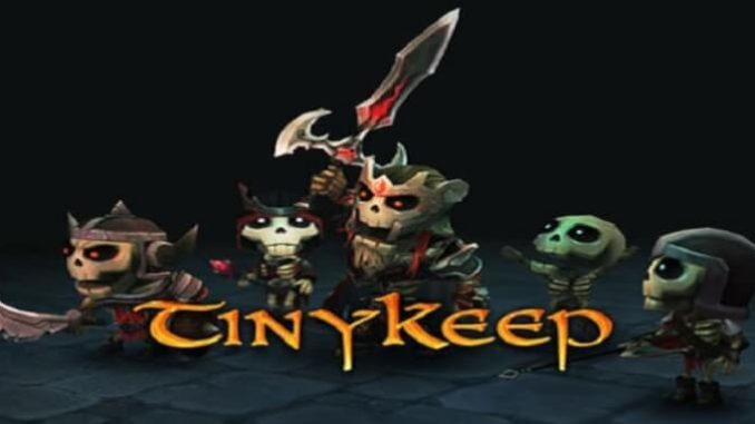 TinyKeep, gamepare