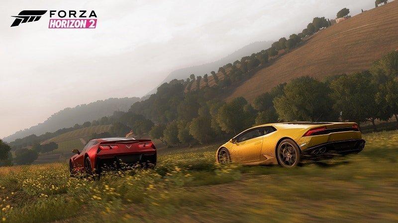 Forza Horizon 2_screen2